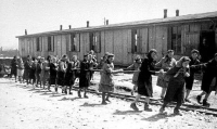 Jewish women at forced labor pulling hopper cars of quarried stones